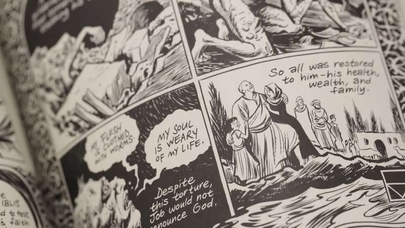 Mooie stripboeken series bekijken