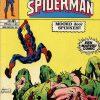 De Spektakulaire Spiderman nr. 41 - Moord door spinnen